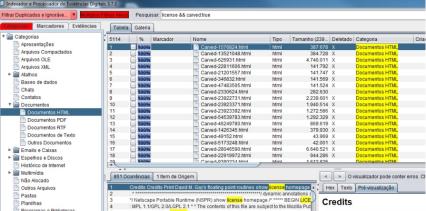 ScreenShot_IPED